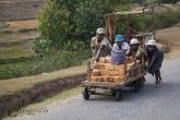 "Ambalavao - vozík ""varamba"""
