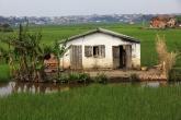 Antananarivo - domek uprostřed rýžových polí