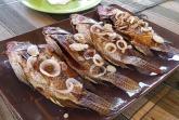 Oběd na lodi - ryby tilápie - řeka Tsiribihina
