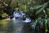 Vodopád v pralese, národní park Mantadia